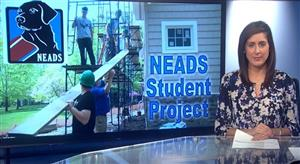 NEADS Project